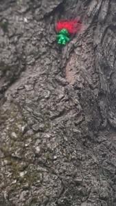 troll in the magic tree